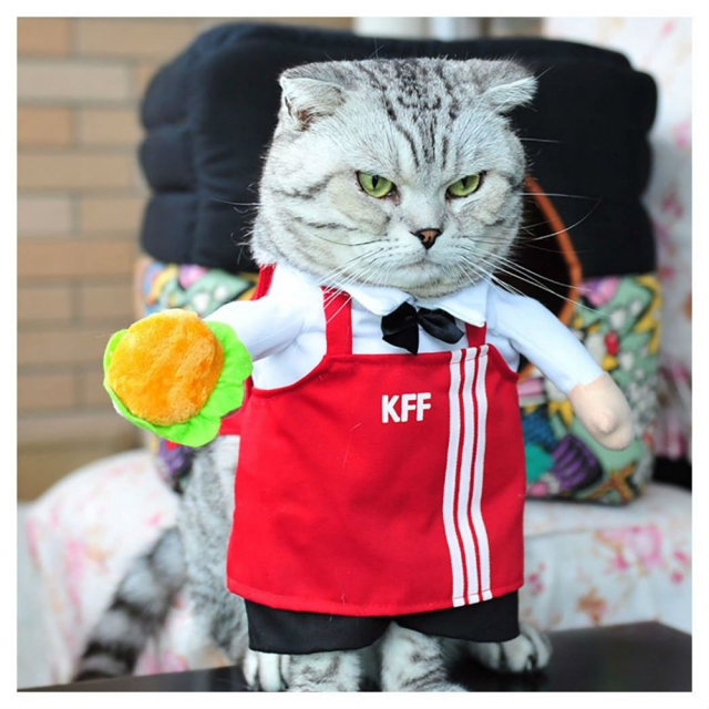 Waiter Style Costume For Cats