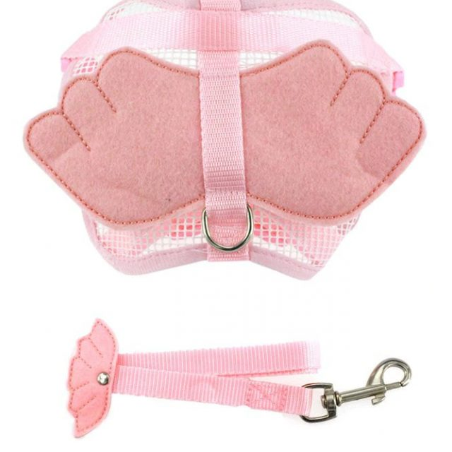 Harness And Leash Set With Angel Wing For Cats